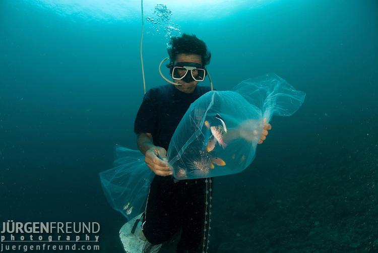 ... underwater ...