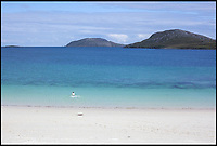 BNPS.co.uk (01202 558833)<br /> Pic: WildGuideScotland/BNPS<br /> <br /> Bagh Bhatarsaigh beach on Vatersay in the Outer Hebridies.<br /> <br /> Scotland's stunning unspoiled scenery is being shown in a whole new light in a book that reveals the hidden gems off the beaten track north of the border.<br /> <br /> Three young photographers travelled the width and breadth of Scotland and snapped 750 picturesque places which include shimmering lochs, ancient forests, lost ruins, hidden beaches, secret islands, dramatic cliffs, tiny glens and mysterious grottoes. <br /> <br /> Friends Kimberley Grant, David Cooper and Richard Gaston, all in their late 20s, have spent the past two years exploring lesser known idyllic spots which they are keen to bring to a wider audience.