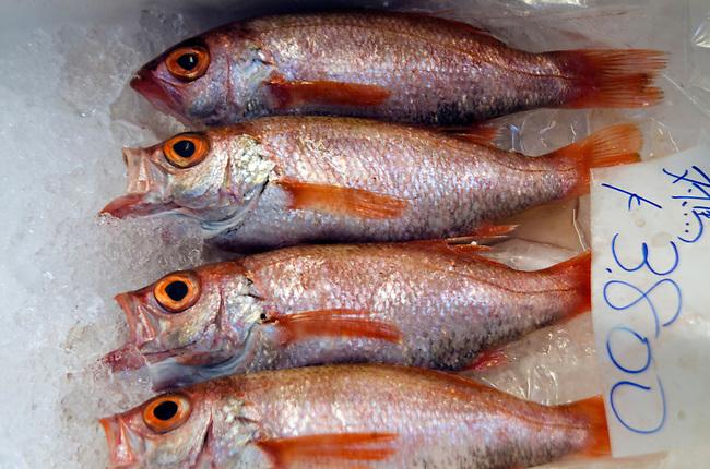 WHole fish for sale at Tsukiji Fish Market Tokyo Japan