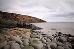 Cullernose Point, Northumberland, UK