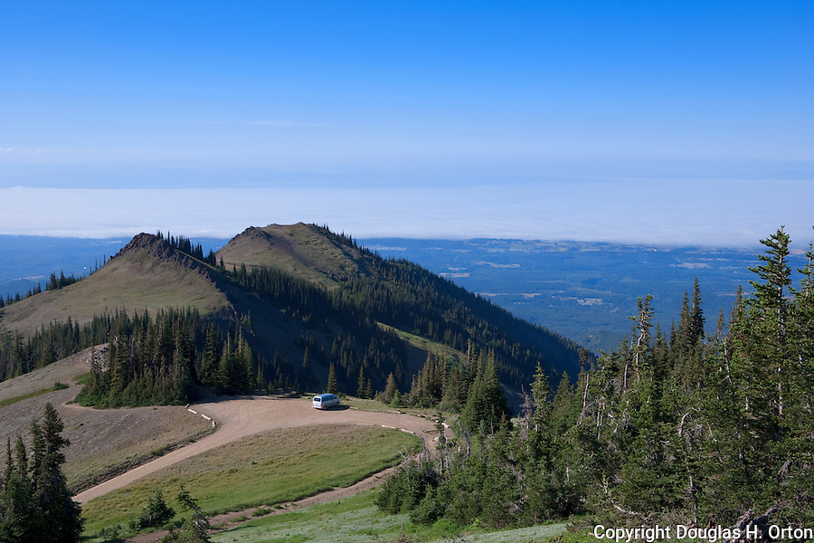 olympic national park essay Thank you so much for this amazing photo essay it inspires me to organize a trip to olympic national park on one of my future trips to washington.