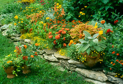 Orange and yellow blooming flower bed stepped up from lawn by low rock wall