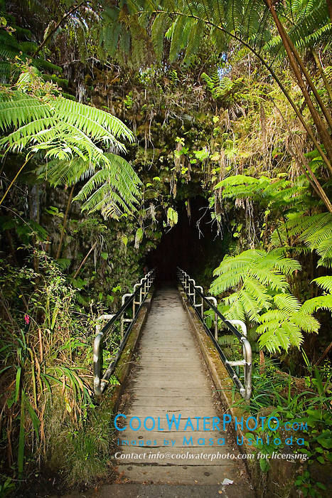 Thurston Lava Tube ( Nahuku ) entrance, Hawaii Volcanoes National Park, Kilauea, Big Island, Hawaii