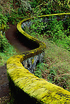Stone fence leading to waterfall, Columbia River gorge, Oregon