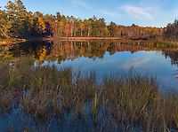 Apostle Islands National Lakeshore, WI:  Evening light reflections an ephemeral pond in fall, at Little Sand Bay