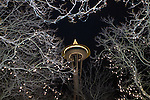 Seattle Space Needle frame in trees.  Jim Bryant Photo. ©2010. All Rights Reserved.