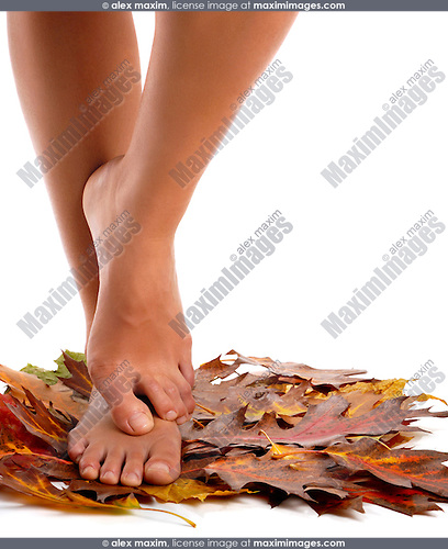 Young barefoot woman standing on red autumn leaves isolated on white background