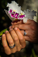 Weddings, Engagements and Anniversary