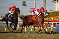 Star Channel with Javier Castellano winning at Gulfstream Park, Hallandale Beach Florida.