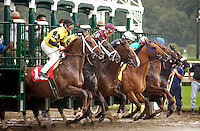 fast horse racing result