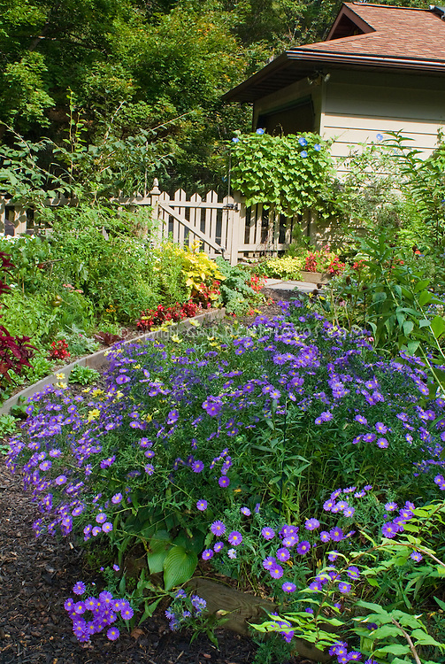 Fall Autumn Flower Garden And House With Flowers And
