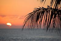 Sun Tickler - From Sunset Wharf, Key West, Florida.
