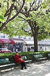 Notre Dame Park in Spring, Paris, France
