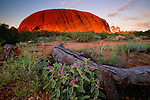 Ayers Rock, Uluru National Park, Australia