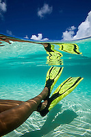 Split level look at a snorkeler's legs and fins<br />