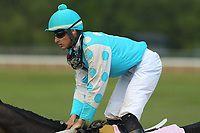HOT SPRINGS, AR - APRIL 15: Oak Brook #8, with jockey Alex Canchari aboard after the 5th race at Oaklawn Park on April 15, 2017 in Hot Springs, Arkansas. (Photo by Justin Manning/Eclipse Sportswire/Getty Images)