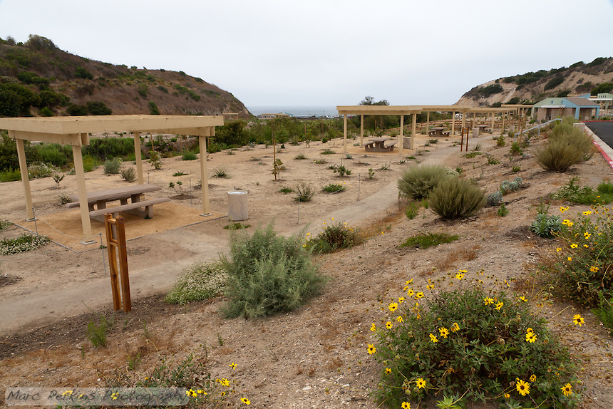 Crystal Cove State Park opened a new day use area in the summer of 2011.  This photograph shows the row of picnic tables that is adjacent to the parking lot.  There is a path that leads to the ocean, and also a path connecting the day use area to the trails leading into Crystal Cove State Park's inland wilderness.