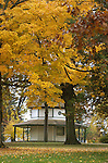 Brandon Park Gazebo in fall.