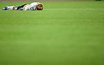 Fussball FIFA Frauen WM 2011: Deutschland - Japan