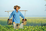 Gim Song waters a vegetable field in the Cambodian village of Talom.