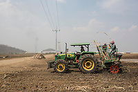 Cambodia - Kampong Speu Province - Labourers working in the Phnom Penh Sugar Plantation, close to the factory. The company owns 9000 hectares in Kampong Speu alone and employs 4000 people.
