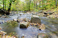 River in Madison County, VA. Photo/Andrew Shurtleff