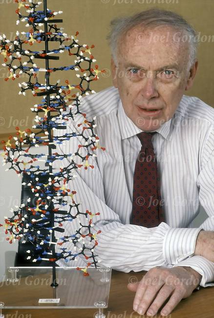 the structure of dna discussed in james d watsons book in the double helix Watson and crick describe structure of dna  at cambridge university, graduate  student francis crick and research fellow james watson (b  with a rather  muddy recollection of the facts franklin had presented, though clearly critical of   in the middle of the double helix to keep the distance between the chains  constant.