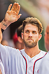 15 June 2016: Washington Nationals outfielder Bryce Harper returns to the dugout after scoring in the 9th inning against the Chicago Cubs at Nationals Park in Washington, DC. The Nationals defeated the Cubs 5-4 in 12 innings to take the rubber match of their 3-game series. Mandatory Credit: Ed Wolfstein Photo *** RAW (NEF) Image File Available ***