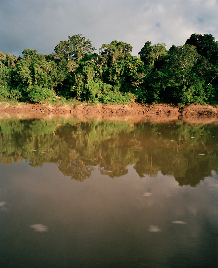 Amazon River, Tambopata National Reserve, Amazon region, PERU, South America