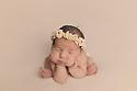 Charlotte T Newborn Session Baby Bee