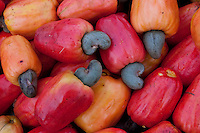 Cashew for sale at open-air market in north Brazil.