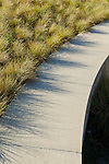Ornamental grasses edge a curving stone wall.