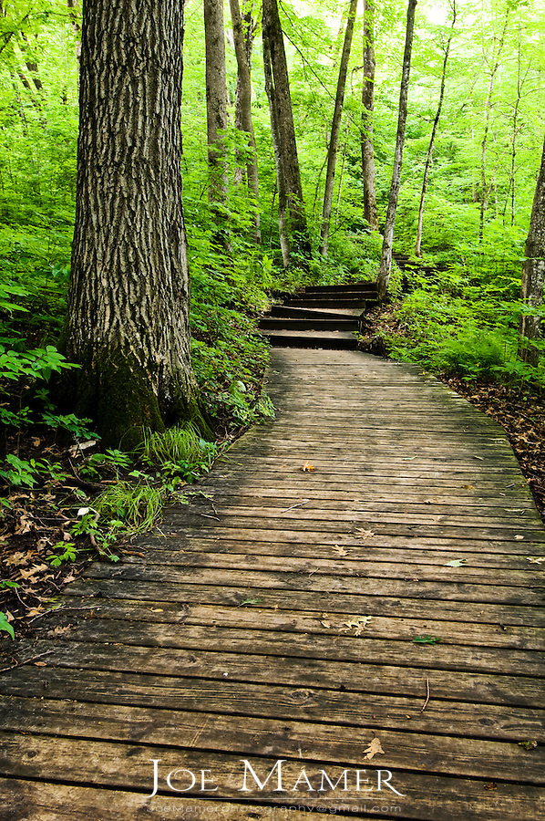 Board walk trail through Nerstrand Big Woods State Park. the board walk was constructed to protect a vulnerable area along Prairie Creek.