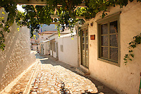 Narrow streets & houses of Hydra,  Greek Saronic Islands.
