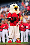 23 April 2010: Washington Nationals' mascot Screech stands at attention during the National Anthem prior to a game against the Los Angeles Dodgers at Nationals Park in Washington, DC. The Nationals defeated the Dodgers 5-1 in the first game of their 3-game series. Mandatory Credit: Ed Wolfstein Photo