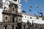 South America, Ecuador, Quito.  Pigeons grace the plaza of the impressive San Francisco Church in Quito's historical center, a UNESCO World Heritage site.