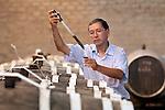 Peru, Wine Maker,Tasting Wine, Bodega Ocucaje, Winery And Vineyards, Ocucaje Desert