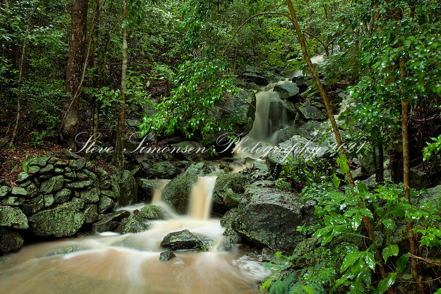 Cinnamon Bay  Waterfall<br /> Found during heavy rains at the gut<br /> Virgin Islands National Park.<br /> St. John, U.S. Virgin Islands