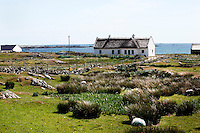 View from behind of a seaside cottage in the landscape, Connemara, Ireland, in the afternoon. The typical whitewashed cottage sits right on the coast with fields behind. Picture by Manuel Cohen