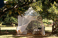 A pair of camp beds beneath a tent of mosquito netting in this sunlit garden in Kenya