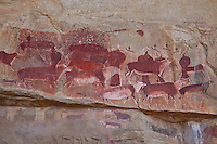 San Rock art at Kamberg .Drakensberg Mountains, South Africa.Kamberg Nature Reserve .KwaZulu-Natal Region.Ancient pictographs by vanished Bushmen people