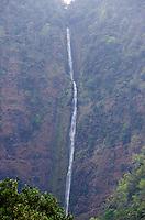 Hi'ilawe Falls in the back of Waipi'o Valley, Hamakua District, Big Island.