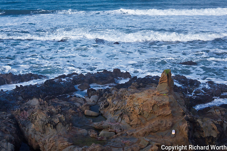 An out-of-place plastic jug of orange juice sits on a rocky outcrop at Bean Hollow State Beach.