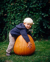 A little boy plays with a giant pumpkin in the garden