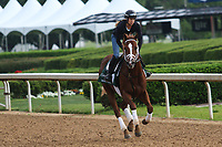 HOT SPRINGS, AR - April 14: Malagacy gallops at Oaklawn Park on April 14, 2017 in Hot Springs, AR. (Photo by Ciara Bowen/Eclipse Sportswire/Getty Images)