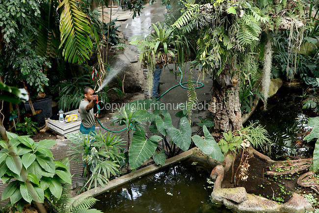 Tropical Rainforest Glasshouse (formerly Le Jardin d'Hiver or Winter Gardens), 1936, René Berger, Jardin des Plantes, Museum National d'Histoire Naturelle, Paris, France. View from above of Rudolf Guillaume, gardener, watering the plants around the pool at the bottom of the cave.
