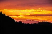 Sunset at Mt. Rainier