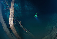 RX0203-D. scuba diver (model released) at 90 feet hovering above brown misty layer of hydrogen sulfide. Limbs of fallen trees reaching upward through the cloud and an island of sediment and vegetation create an otherworldly scene deep in Cenote Angelita. Riviera Maya, Yucatan Peninsula, Mexico.<br /> Photo Copyright &copy; Brandon Cole. All rights reserved worldwide.  www.brandoncole.com