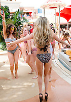 Encore Beach Club at Encore Casino and Resort. Las Vegas, Nevada, USA