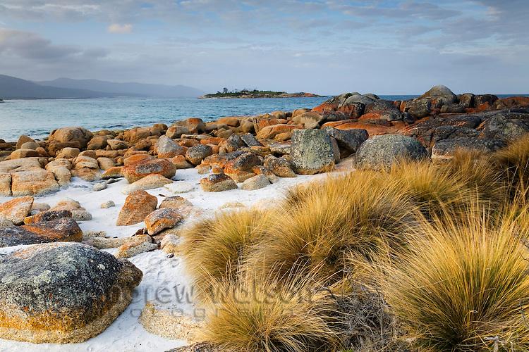 Coastal scenery at Redbill Beach.  Bicheno, Tasmania, AUSTRALIA
